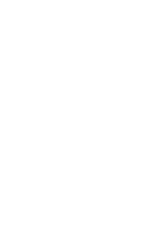 diagrama zaum 04 min 1 1