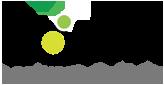 """ZAUM Language Services: Temos como visão ser """"A melhor empresa de serviços de tradução do Brasil"""""""